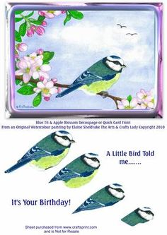 BLUE TIT APPLE BLOSSOM BIRD DECOUPAGE OR QUICK CARD FRONT on Craftsuprint - Add To Basket!