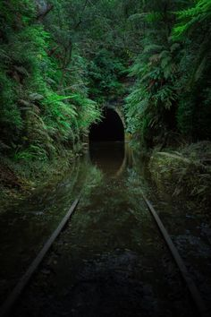 [OC] The abandoned Helensburgh glow worm tunnel after a few days of heavy rain. : AbandonedPorn [OC] The abandoned Helensburgh glow worm tunnel after a few days of heavy rain. Abandoned Buildings, Abandoned Places, Abandoned Castles, Haunted Places, Abandoned Train, Abandoned Mansions, Landscape Photography, Nature Photography, Magic Places