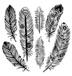 Set of ethnic feathers vector 1330424 - by transia on VectorStock®