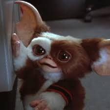 Gizmo the Mogwai cute!!!!!!!!!!!