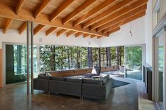 house in the forest roof sparre living area terrace - asymmetric architecture