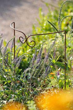 Wo immer Blumen drohen sich hängen zu lassen, schafft diese hübsche Staudenstütze
