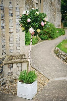 Clic Elegance Chapel Weddingtree