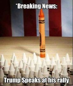 Funny Donald Trump Pictures and Viral Images: Trump Speaks at His Rally