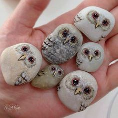 These Painted Owl stones are just to cute! :)  Have you tried painting stones like this before?   Photo: Akie