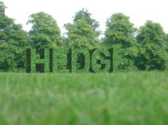 Creating Hedgerow Text in Photoshop