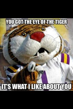 1000 Images About Lsu Bday On Pinterest Lsu Football