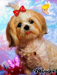 image bourriquet a imprimer itH4eauj