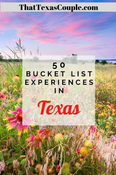 50 Awesome Texas Bucket List Experiences - That Texas Couple Usa Travel Guide, Travel Usa, Travel Guides, Travel Info, Canada Travel, Travel Tips, Bucket List Destinations, Amazing Destinations, Travel Destinations
