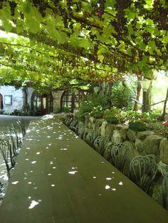 Un pranzo 'al fresco' sotto una vigna carica di grappoli d'uva http://lefotodiluisella.blogspot.it/