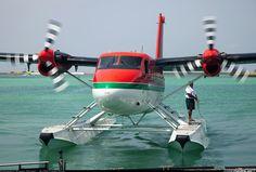 Amphibious Aircraft, Bush Plane, Float Plane, Flying Boat, Commercial Aircraft, Air Travel, Amphibians, Otters, Taxi
