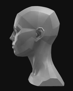 Eric michael wilson wood carving project anatomy, facial anatomy e head ana Facial Anatomy, Head Anatomy, Anatomy Poses, Anatomy Drawing, Anatomy Art, Zbrush Anatomy, Anatomy Sculpture, Sculpture Art, Planes Of The Face