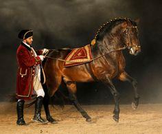 Escola Portuguesa de Arte Equestre | Parques de Sintra | Parques de Sintra - Monte da Lua