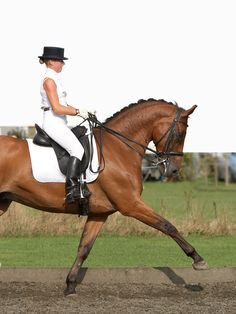 It develops the strength and balance that allow a horse to go cross country and show jump competently.