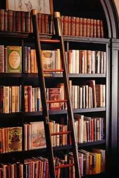 That is a ladder in a home library. I wish I had a library with a ladder. Beautiful Library, Dream Library, Future Library, I Love Books, Books To Read, Library Ladder, Library Shelves, Library Ideas, Bookshelf Ideas
