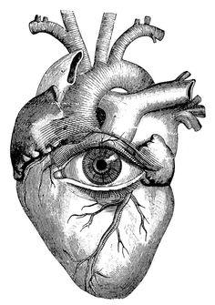 Strange #Vector #Anatomical #Heart .. #Illustration #Art ..