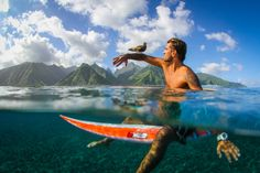 """Caption This: Man and Bird Last week we asked you to caption this photo of a man sitting on a surfboard with a bird perched on his arm in Teahupoo, Tahiti taken by Your Shot member Leonardo Neves for our series on the National Geographic Facebook page.And the editors' favorite caption is…""""The only real way to surf and tweet…""""—Rory HeffernanThanks for captioning this! Try your hand at writing captions this week on National Geographic's Facebook page. New """"Caption This"""" photos are posted on…"""