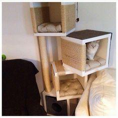 A cat condo/scratcher! Ikea Hacks For Cats, Cat Hacks, Cat Furniture, Furniture Makeover, Ikea Cat, Diy Cat Tree, Ikea Hackers, Cat Condo, Cat Accessories