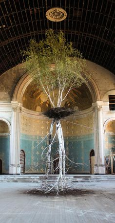 The 40-foot Hanging Garden installation features a living birch tree that is supported by a large, inverted dead birch tree. The intertwined root systems of the two birches creates a suspended garden that is oriented as a cross or tower at the center of the church.