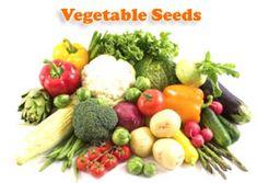 Buy Online Vegetable Seeds in India Flower Seeds Hybrid Herb Seeds India Herb Seeds, Garden Seeds, Organic Vegetable Seeds, Seeds Online, Seed Packets, Delicious Fruit, Flower Seeds, Potato Salad, Good Food