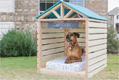 Cute dog sitting in a wooden doghouse gazebo