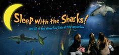 ... to do in Tulsa Pinterest Aquarium, Oklahoma and The Aquarium