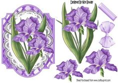 Pretty purple Iris flowers on lace with bow on Craftsuprint designed by Nick Bowley - Pretty purple Iris flowers on lace with bow, on lattice frame, makes a pretty card, can be seen other designs - Now available for download!