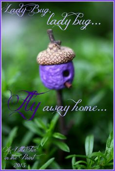 Fairy house She built this as a ladybug house, but would be a great fairy house! My Fairy Garden, Garden Whimsy, Gnome Garden, Ladybug House, Fairy Furniture, Gnome House, Fairy Garden Accessories, Fairy Doors, Miniature Fairy Gardens