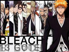 Bleach shinigamis art 2 GOTEI 13