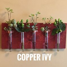 Get ready for the holidays! Check out our 9 test tube hanging vase special SALE in Copper Ivy's shop!