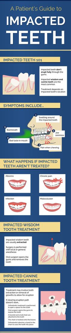 What happens when you have an impacted canine tooth? Treatment may involve tooth extraction or removal of growths to allow for eruption. Take a look at this infographic about oral surgery.