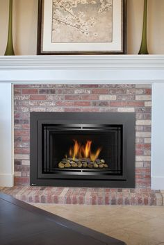 24 Best Gas Inserts Images Gas Fireplace Inserts Gas Insert Regency