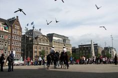 Best Amsterdam Attractions and Activities: Top 10Best Attraction Reviews
