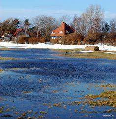 Vitte Insel Hiddensee von Robert Ott