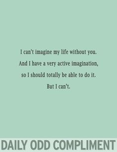 I can't imagine my life without you. And I have a very active imagination, so I should totally be able to do it. But I can't.