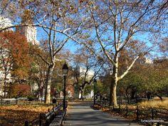 TURISCURIOSA EN USA: DÍA 8. UNION SQUARE, GREENWICH VILLAGE Y MI ESTRENO EN EL METRO DE NUEVA YORK. Washington Square nos da la bienvenida a Greenwich Village.