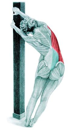So what kind of muscles do you stretch when you do yoga? Look at these stretching exercises with pictures do find out - Vicky Tomin is a Yoga exercise Yoga Kundalini, Yoga Meditation, Fitness Del Yoga, Yoga Anatomy, Flexibility Workout, Stretching Exercises, Finger Stretches, Massage Therapy, How To Do Yoga