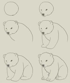 Easy drawings of bears easy drawings doodle drawings easy animal drawings polar bear cartoon polar bears . Doodle Drawings, Easy Drawings, Drawing Sketches, Pencil Drawings, Sketching, Drawing Lessons, Drawing Techniques, Polar Bear Drawing, Tracing Pictures