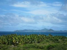 Caribbean ♥ http://the-happy-project.com