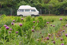 Alternative Wohnmobil-Stellplätze: Bauernhof-Hopping mit dem Campingbus