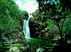 Explore Australia's top end with Northern Territory tours from Adventure Tours Australia. Tour Darwin, Uluru, Kakadu, Alice Springs and plenty more! Litchfield National Park, Adventure Tours, The Dreamers, Waterfall, National Parks, Australia, Explore, Top, Travel