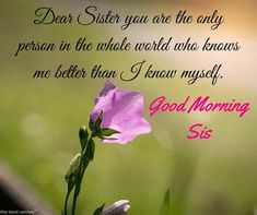Looking for Good Morning Wishes for Sister? Start your day by sending these beautiful Images, Pictures, Quotes, Messages and Greetings to your Sis with Love. Good Morning Sister Images, Good Morning For Her, Good Morning Photos, Good Morning Gif, Good Morning Messages, Morning Pictures, Good Morning Wishes, Prayers For Sister, Message For Sister
