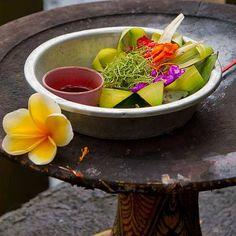 Bali - die beste Zeit deines Lebens. Gut geplant mit AIFS. - www.aifs.de