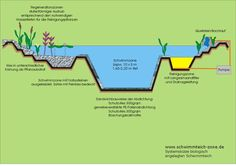natural swimming pools diagram - Buscar con Google