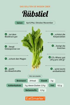 Peduncle Stielmus (Rübstiel) You should know about turnip stalk Nutrition Education, Nutrition Plans, Nutrition Information, Healthy Foods To Eat, Health And Nutrition, How To Stay Healthy, Healthy Life, Healthy Eating, Nutrition Month