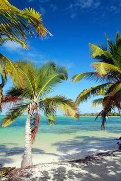 Oferta de viaje Super oferta Maldivas en el hotel Biyadhoo *** (Vuelo incluido)