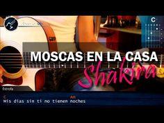 Shakira - Moscas en la casa. Acordes
