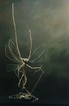Made From Gum Tree Pieces & The Wings Are Fencing Wire & Fine Fuse Wire. He Is Suspended By A Large Coiled Wire From The Base & Two Rods To His Hands, So He Dances & Comes To Life In The Slightest Breeze..