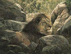 """Serengeti Monarch"" - Simon Combes"