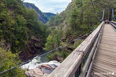 Suspension Bridge spanning Tallulah Gorge State Park in Rabun County in the Northeast Georgia Mountains.